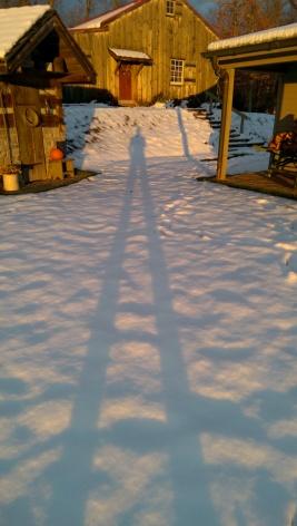 Snowy shadow selfie